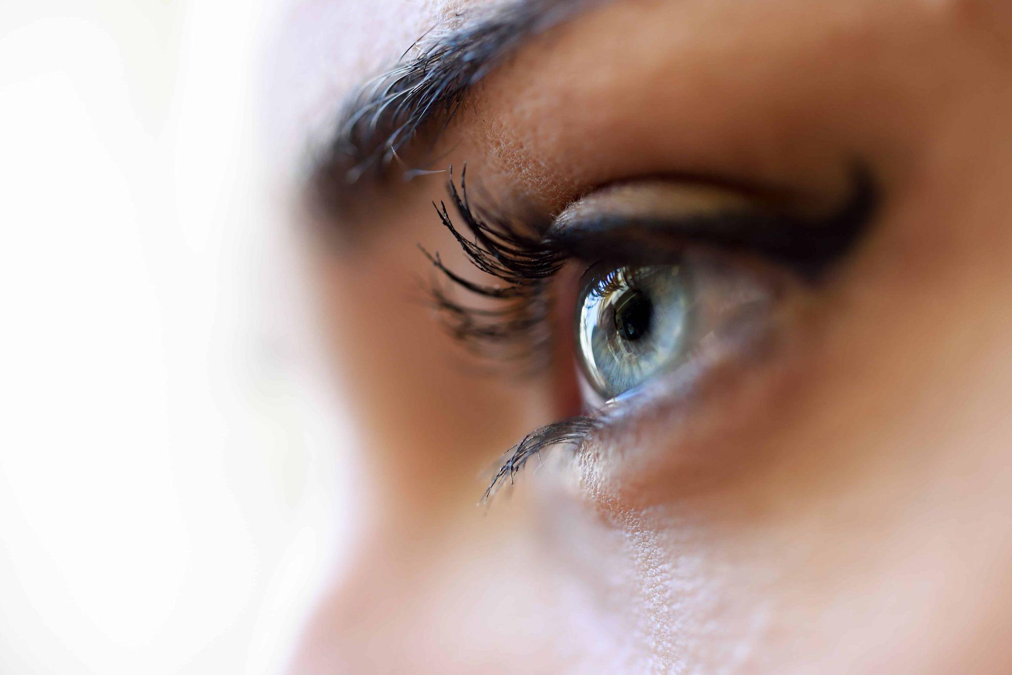Beauté du regard, réhaussement de cils, regard de biche Institut Emeline Esthétique La Verrie 85